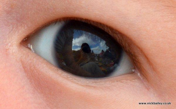 eye reflections. © Nick Bailey